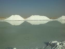 بازدید دریاچه نمک